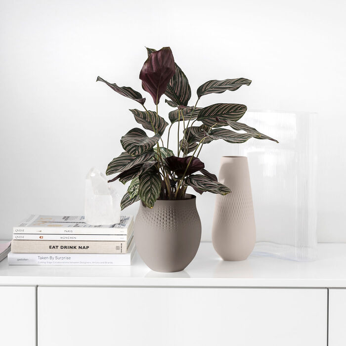 Manufacture Collier Vases